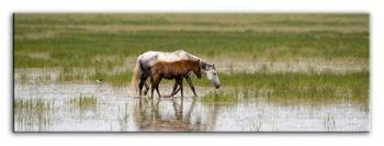 "Obraz ""Wild Nature"" reprodukcja 150x50 cm"