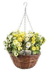 Roślina Dekoracyjna Wiszące Kwiaty W Koszyku