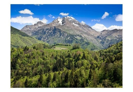 Fototapeta - Holiday in the mountains