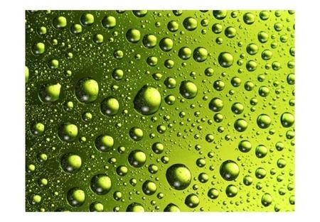 Fototapeta - Krople wody na butelce piwa