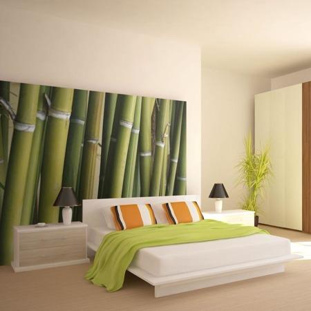 Fototapeta - dekoracja zen - bambus